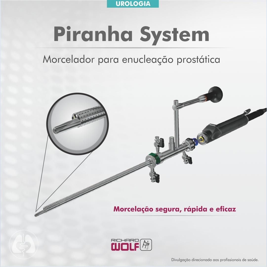 Assista o desempenho do produto Piranha System, da Richard Wolf